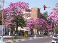 calle Belgranounse